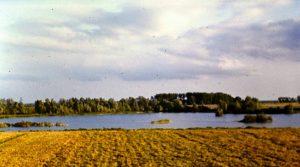op-de-rand-van-de-immerloplas-ligt-nu-de-pleijweg-foto-is-uit-1974